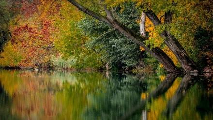El lago de pensamientos